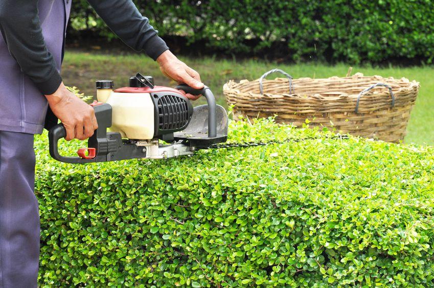 Landscape Gardeners Bristol Wills Landscaping Bristol